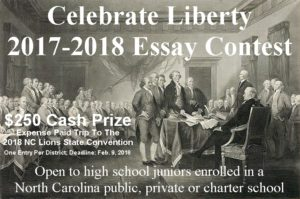 celebrate america essay contest Essay contests poster contests writing contest deadline is in early may to celebrate jewish heritage week the of north america (jasna) essay contest.